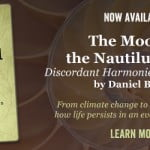 Now Available: The Moon in the Nautilus Shell