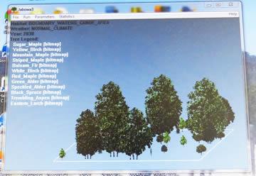 Jabowa Forest Model